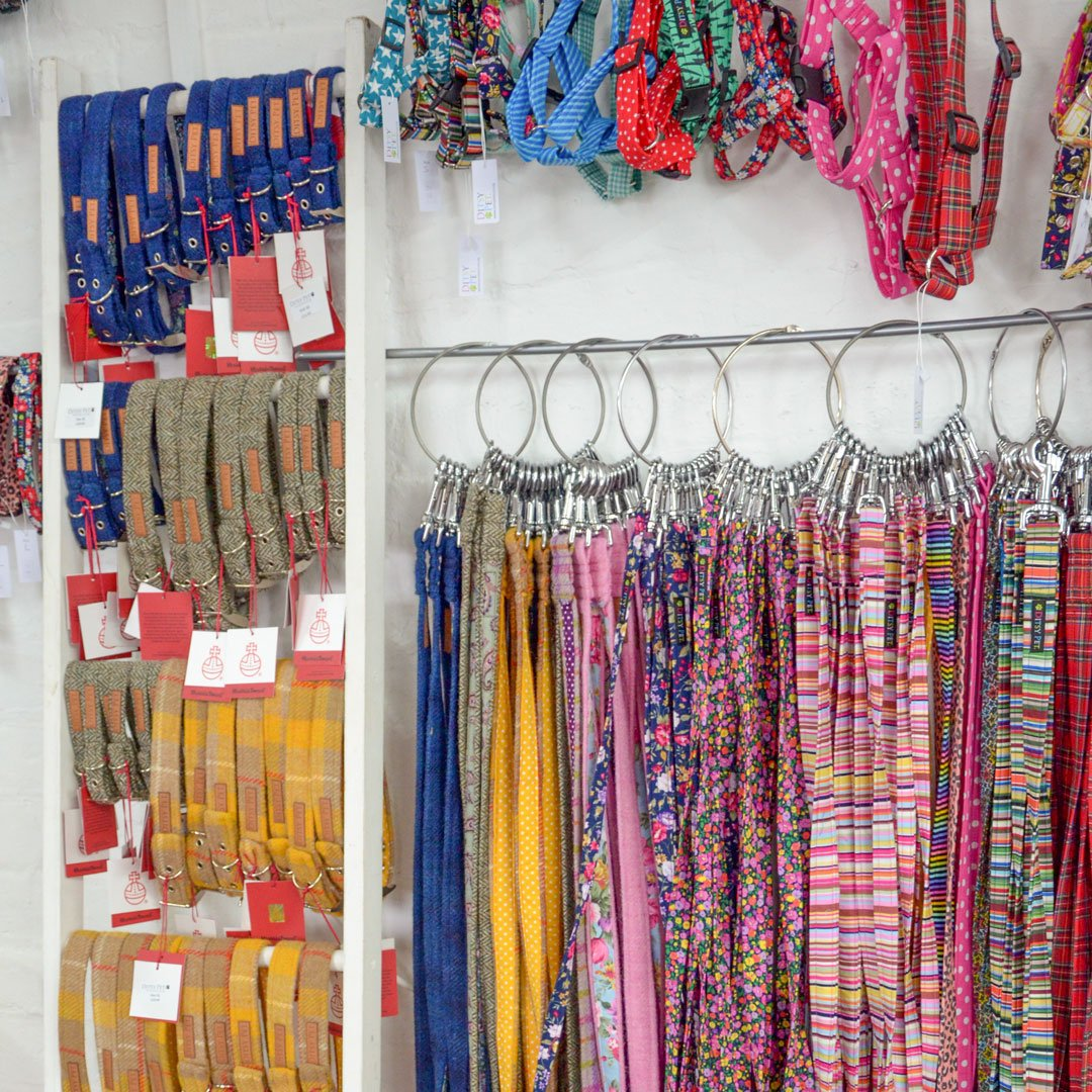 Ditsy Pet | rows of collars and leads