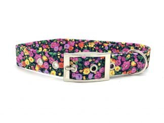 Ditsy Floral Buckle Collar | Ditsy Pet