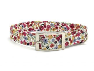 Mary Buckle Collar | Ditsy Pet