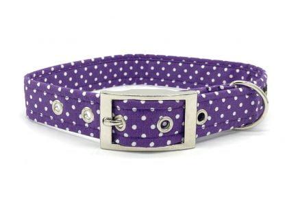 Mauve Buckle Collar | Ditsy Pet